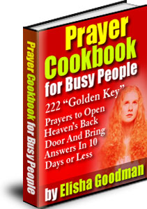 Prayer cookbook for busy people: book 7: rainmaker's prayer by.